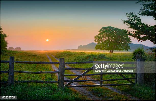 badbury rings, near wimborne minster, dorset, england. - minster stock photos and pictures