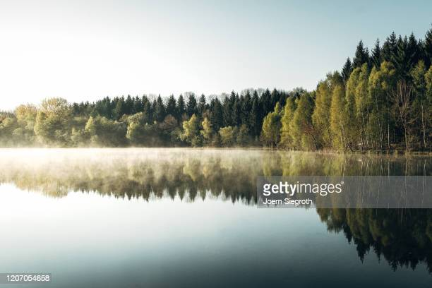 badesee am morgen - skinny dipping stock pictures, royalty-free photos & images