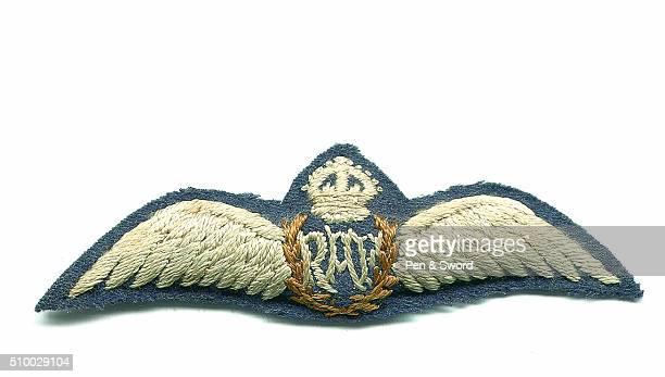 RAF Badge United Kingdom