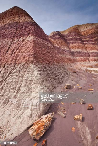 badland formation at blue mesa - petrified wood stock pictures, royalty-free photos & images