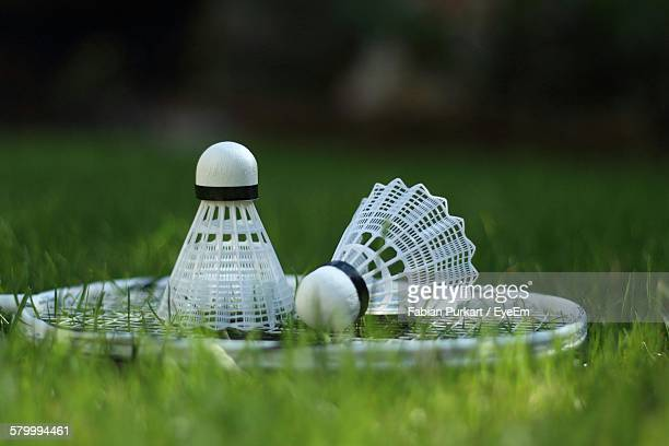 Badminton Racket And Shuttlecocks On Grassy Field