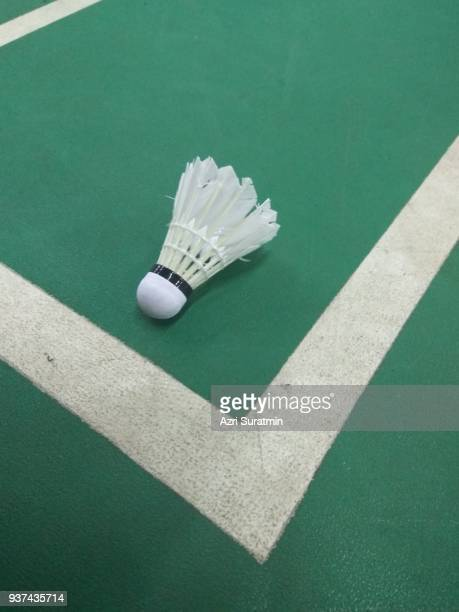Radient Shuttlecocks To Have A Long Historical Standing Sporting Goods Badminton