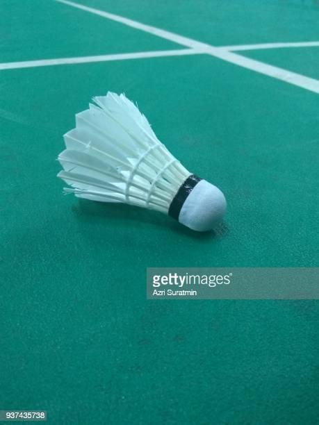 Badminton shuttlecock at the green latex court
