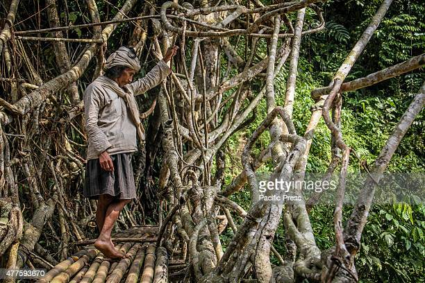 Baduy tribesman looks on a root bridge in a forest area of the mountains in Banten Around 12000 Baduy tribesmen inhabit the 5000 hectares of tropical...
