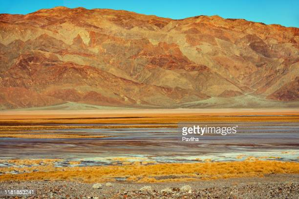 badwater basin in death valley, california, usa - great basin stock pictures, royalty-free photos & images