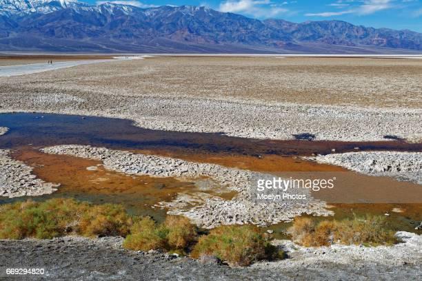Badwater Salt Flats Pool