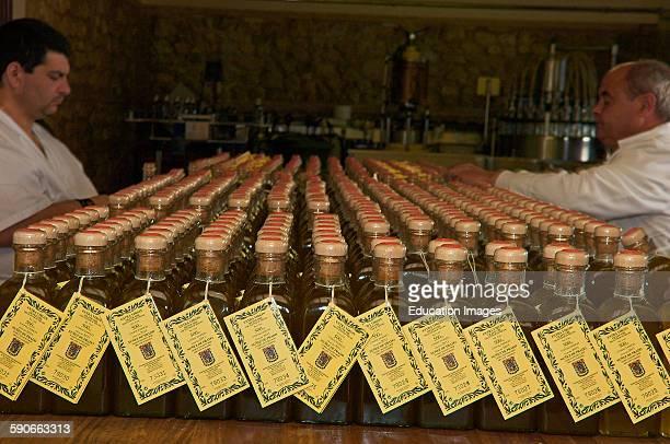 Baena Olive oil Nunez de Prado Manual Tagging Route of the Caliphate Cordoba province Andalusia Spain