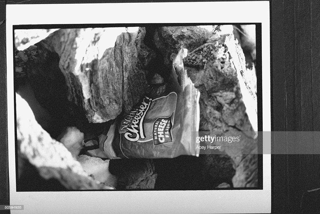 Cave Days  Crack