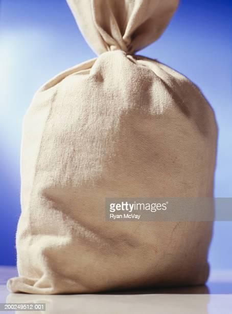 Bag of money, (Close-up)