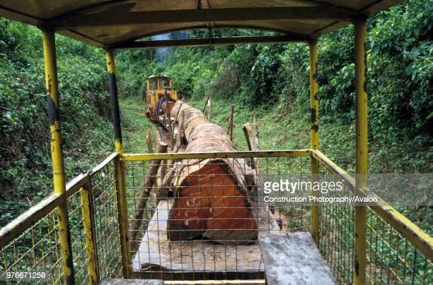 Bagnall Diesel hauls logs from the forest along the West Line on the Ashanti Goldfield Obuasi on Saturday 15 June 1985.