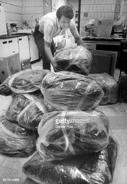 JUN 14 1980 OCT 15 1980 bags of marijuana conflicted from house at 6841 old stage road Credit Denver Post