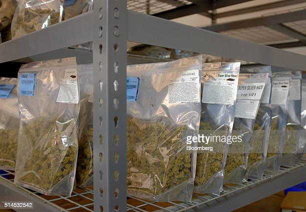Bags of marijuana sit on shelves in a building at the Los Suenos Farms facility in Avondale Colorado US on Thursday Feb 25 2016 About 938...