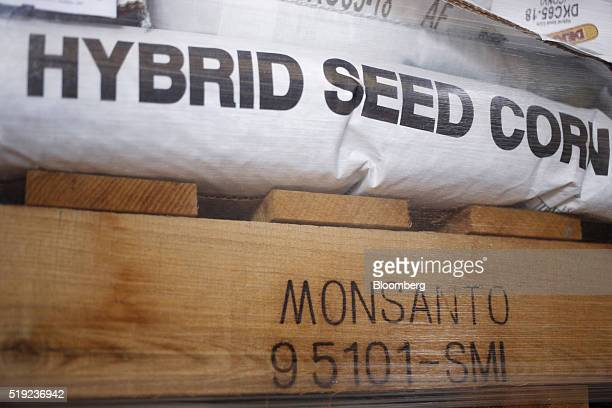 Bags of Monsanto Co Dekalb brand corn seed sit stacked at a Southern States agriculture cooperative in Shelbyville Kentucky US on Friday April 1 2016...