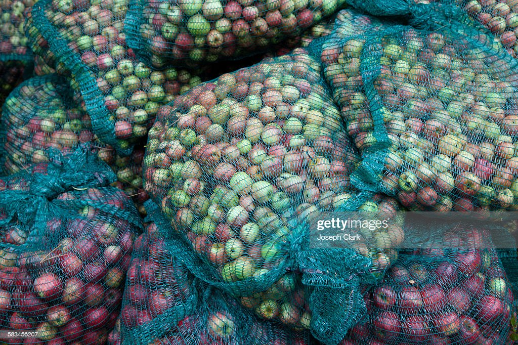 Bags of organic apples : Stock Photo