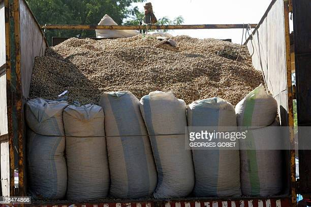Bags of peanuts Senegal's main crop are seen on the back of a truck 11 December 2007 in the village of Ndoffane in Kaolack region where once more the...