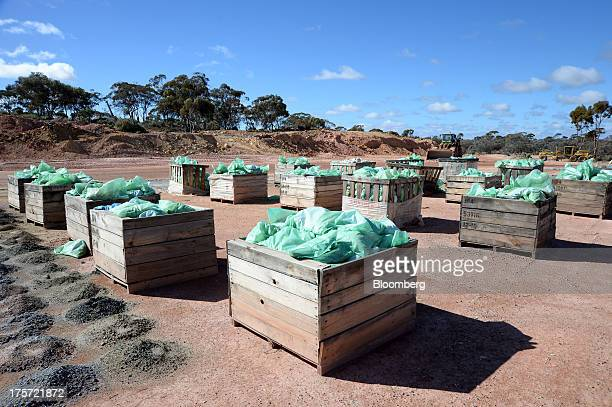 Bags of soil samples sit in crates at the Phoenix Gold Ltd Castle Hill gold project in Kunanalling northwest of Kalgoorlie Australia on Tuesday Aug 6...