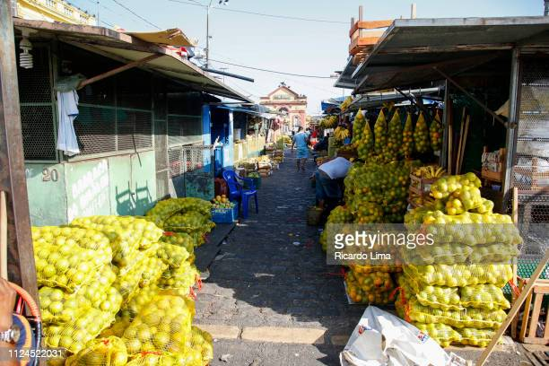 bags with oranges exposed for sale at fair in amazon region, brazil - for stock pictures, royalty-free photos & images