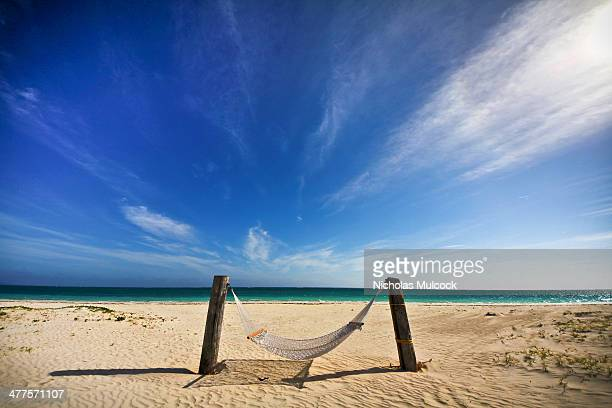 Bahamas hammock, beach, sand, sunshine, shadow, clouds, emerald water, emerald ocean, green water, tropics, shore, shore line, peace, tranquility,...