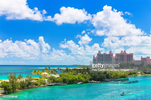 bahamas tropical beach scenery at nassau, caribbean. - ナッソー ストックフォトと画像