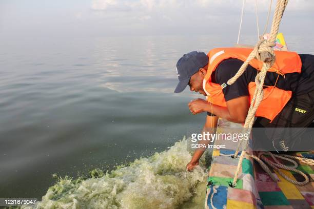 Bahati Mayoma observing green algae during the investigations. Bahati Mayoma, a Tanzanian researcher specializing in aquatic ecology and pollution...