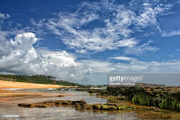 bahia beach - trancoso imagens e fotografias de stock