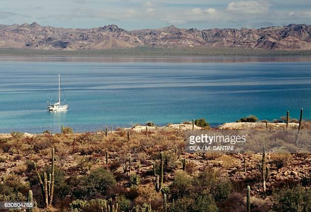 Bahia Concepcion coast between Loreto and Mulege Baja California Sur Mexico