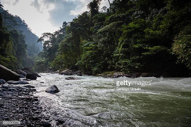 Bahorok River in Gunung Leuser National Park