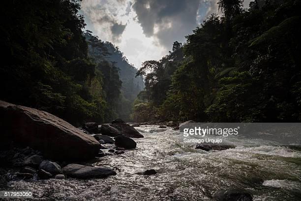 Bahorok River running through Gunung Leuser National Park