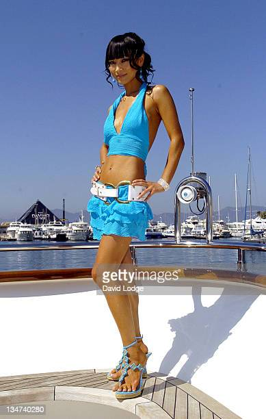 """Bai Ling during 2006 Cannes Film Festival - """"Shanghai Baby"""" - Photocall at Palais du Festival in Cannes, France."""