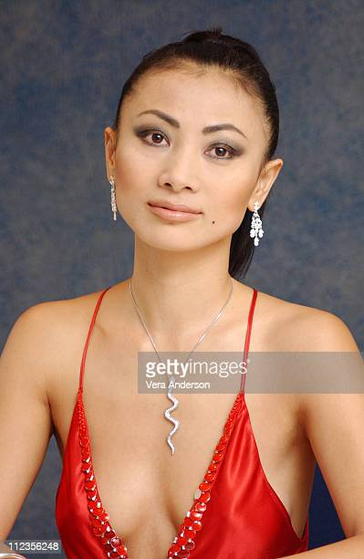 Bai Ling during Sky Captain and the World of Tomorrow Press Conference with Gwyneth Paltrow Jude Law Giovanni Ribisi Bai Ling and Kerry Conran at...