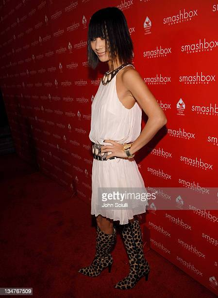 Bai Ling during Smashbox Cosmetics Celebrate the Holidays and Brent Bolthouse's Birthday at Area in Los Angeles California United States