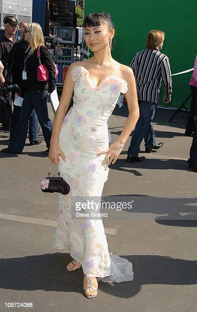 Bai Ling during The 20th Annual IFP Independent Spirit Awards Arrivals in Santa Monica California United States