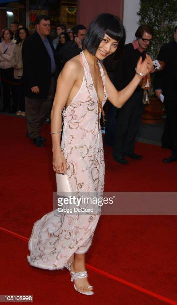Bai Ling during The World Premiere of 'Bruce Almighty' at Universal Amphitheatre in Universal City California United States