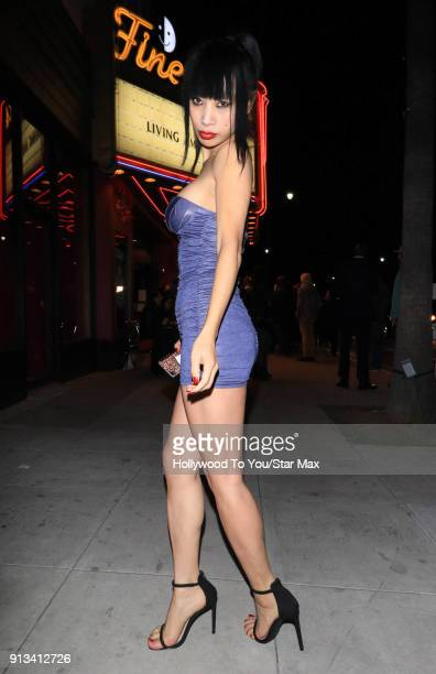 Bai Ling is seen on February 1 2018 in Los Angeles California