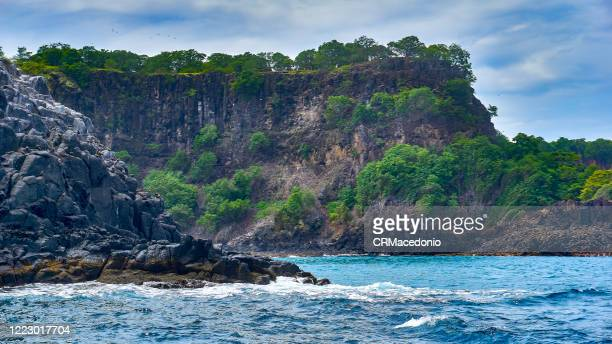baia do porcos seen from the sea, on a delightful boat trip. to the left of the rocks we see dozens of birds. - crmacedonio stock pictures, royalty-free photos & images