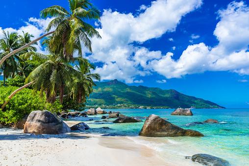 Baie Beau Vallon - Beach on island Mahe in Seychelles 501296920