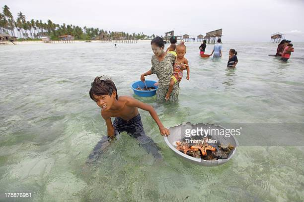 bajau sea gypsies foraging for starfish on a reef - bajau stock pictures, royalty-free photos & images