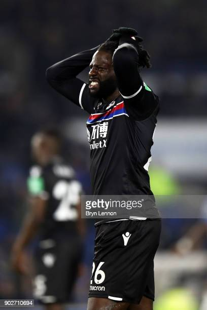 Bakary Sako of Crystal Palace looks on during The Emirates FA Cup Third Round match between Brighton Hove Albion and Crystal Palace at Amex Stadium...