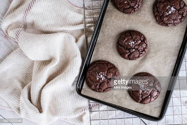 Baked chocolate brownies on a baking tray placed on a wire cooling rack.