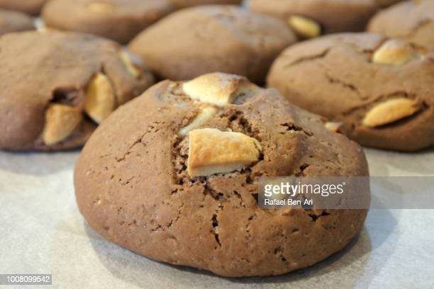 baked white chocolate chip cookies on tray - rafael ben ari stock-fotos und bilder