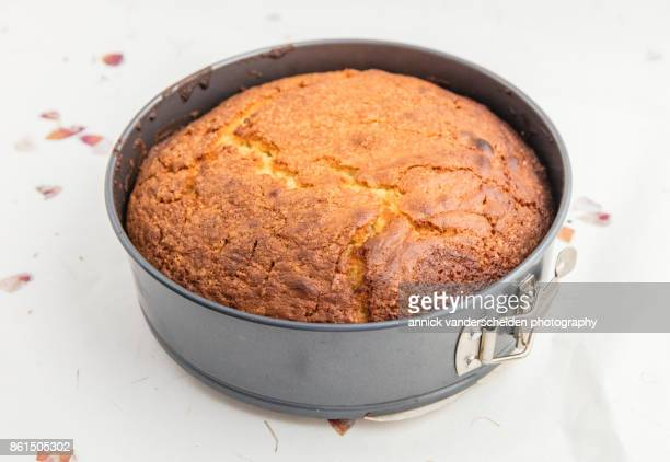 baked yellow cake in springform pan. - sponge cake stock pictures, royalty-free photos & images