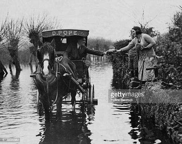 A baker drives his horse and cart through the floodwater in Langport Somerset to deliver bread to housewives
