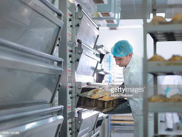 baker taking cakes out of oven in cake factory - monty rakusen stock photos and pictures