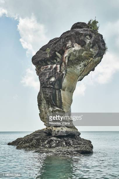 bako national park stone formation - bako national park stock pictures, royalty-free photos & images