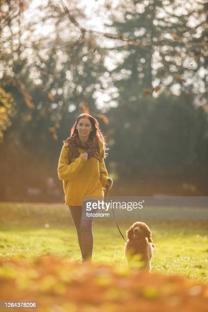 balanced owner, balanced pet - approaching stock pictures, royalty-free photos & images