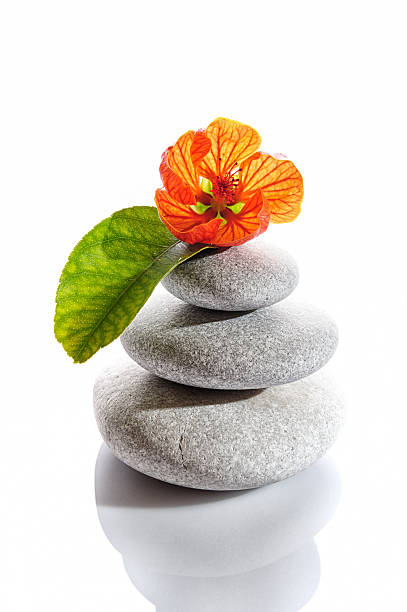 Balanced Stones And Red Flower Wall Art