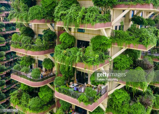 Balconies at Qiyi City Forest Garden residential buildings complex are overrun by plants in Chengdu City, Sichuan Province, China, 15 September 2020....