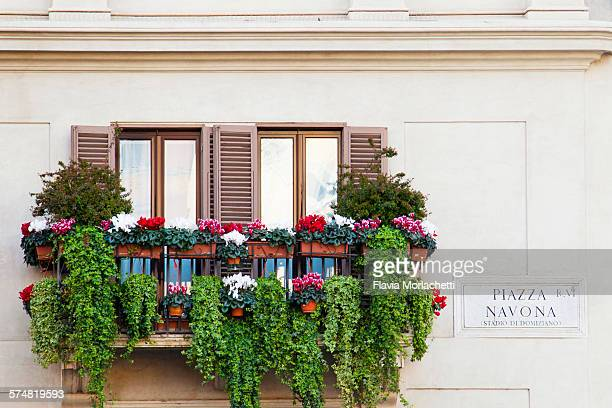 Balcony with flowers in Piazza Navona