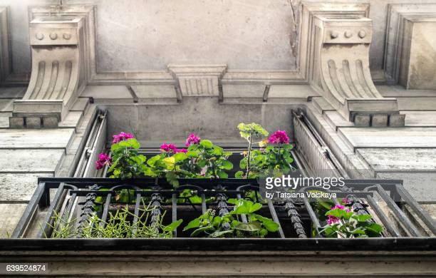 Balcony with flowers of old apartment building, Paris, 2017