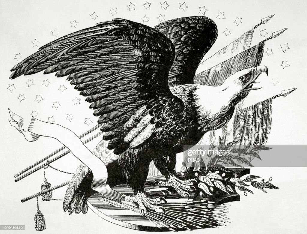 Bald eagle and other patriotic symbols of the american revolutionary bald eagle and other patriotic symbols of the american revolutionary war 1775 1783 buycottarizona Choice Image